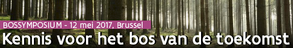 Bossymposium 2017