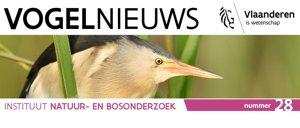 banner Vogelnieuws 28