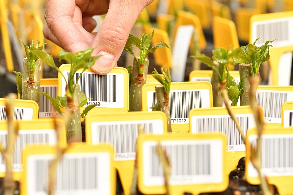 test labels (foto INBO)