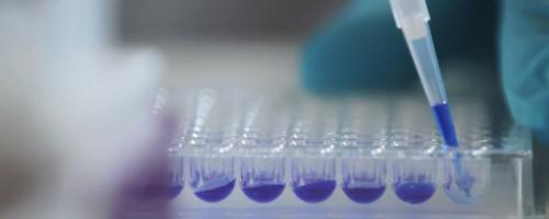 Foto Onderzoeksgroep Genetische Diversiteit