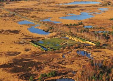 Foto van natuurgebied Groot Schietveld