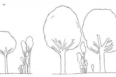 illustratie bosbeheerpakketten