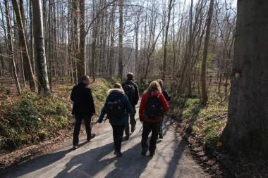 foto van wandelaars in bos
