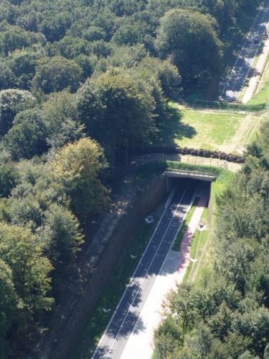 Ecoduct De Warande - foto ANB