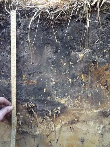 foto van bodem