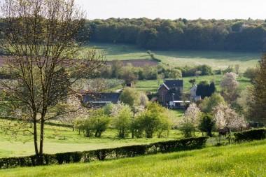foto van Voerens landschap
