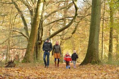 Foto van wandelaars in een bos