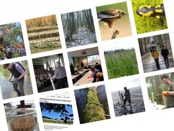 Montage beelden Jaarboek