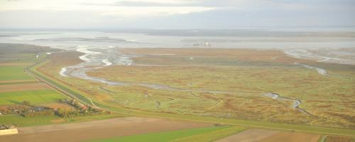 foto estuaria
