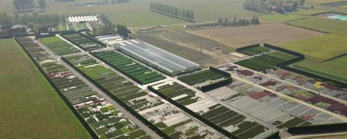foto akkers en tuinbouw
