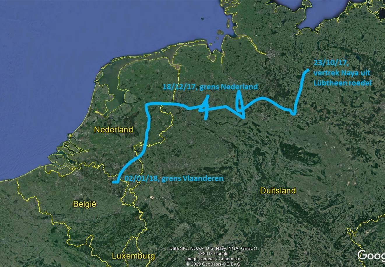 route Naya