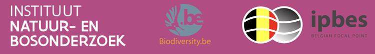 logo's minisymposium